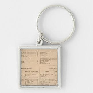 Delaware Index Keychain
