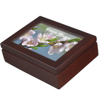Delaware Memory Box