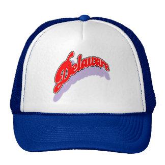 Delaware openswoop cap trucker hat