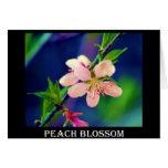 Delaware Peach Blossoms Cards