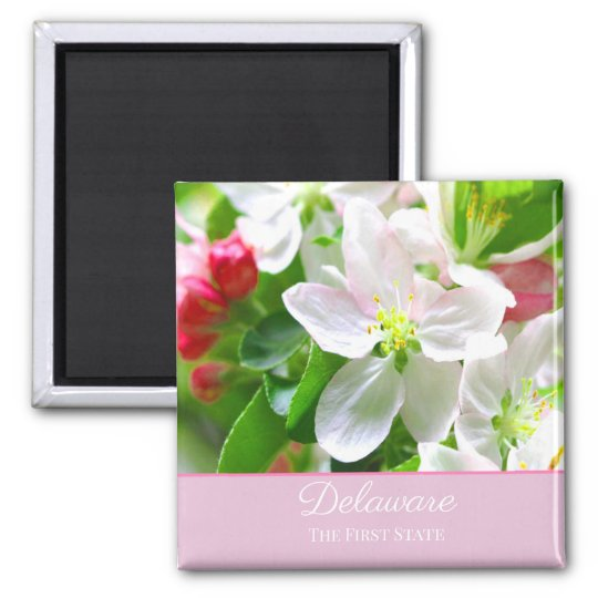 Delaware Peach Blossoms First State Magnet