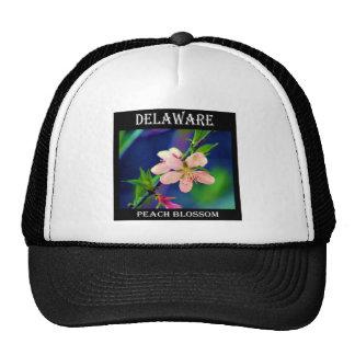 Delaware Peach Blossoms Mesh Hat