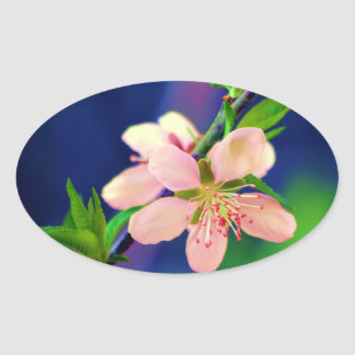 Delaware Peach Blossoms Oval Sticker