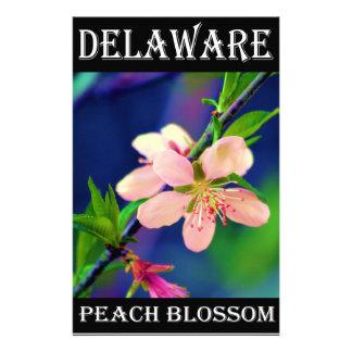 Delaware Peach Blossoms Stationery
