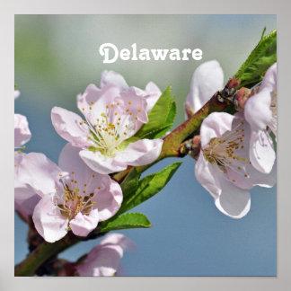 Delaware Print