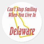 Delaware - Smiling Round Sticker
