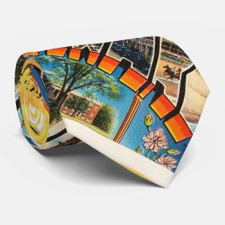 Delaware State DE Old Vintage Travel Postcard- Tie