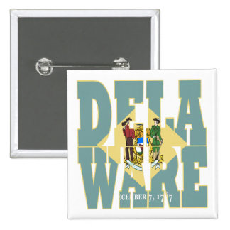 Delaware state flag text button