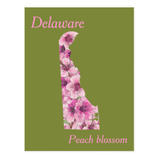 Delaware State Flower Collage Map Postcard