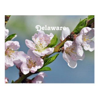 Delaware Tarjetas Postales