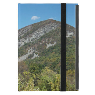 Delaware Water Gap iPad Mini Cover