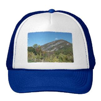 Delaware Water Gap Trucker Hat