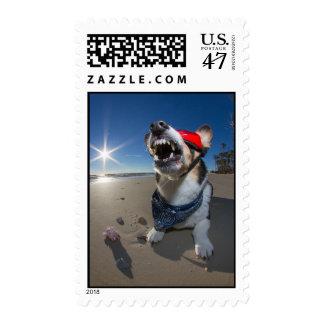 Delayed Time Traveler Postage
