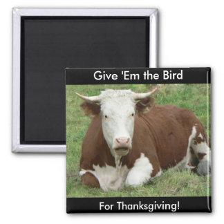 Déles el pájaro para la acción de gracias imán cuadrado