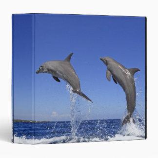 Delfin 2 binder