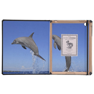 Delfin 2 cases for iPad