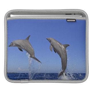 Delfin 2 iPad sleeve