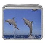 Delfin 2 mangas de iPad