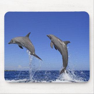 Delfin 2 mouse pad