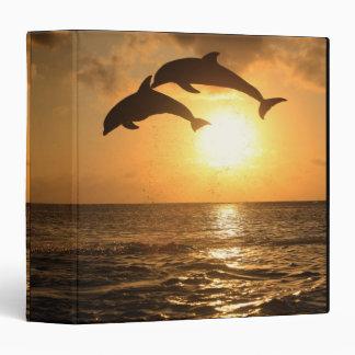 Delfin 3 vinyl binders