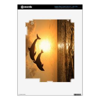 Delfin 3 iPad 3 decals