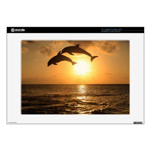 Delfin 3 laptop skins