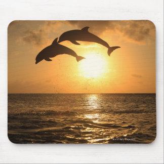 Delfin 3 mouse pad