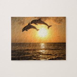 Delfin 3 puzzles