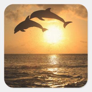 Delfin 3 square sticker