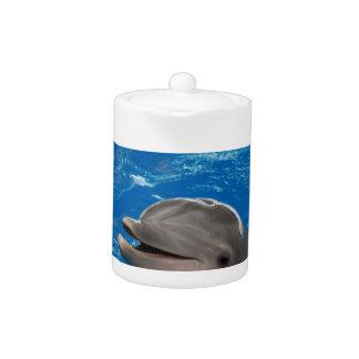 Delfín adorable