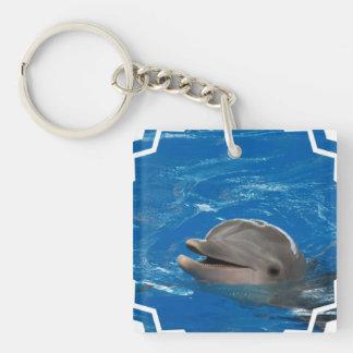 Delfín adorable llavero cuadrado acrílico a una cara