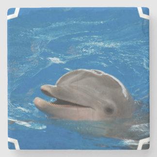 Delfín adorable posavasos de piedra