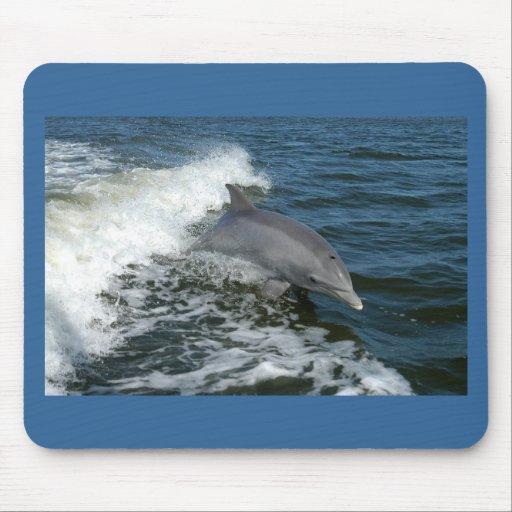 Delfín Alfombrilla De Raton