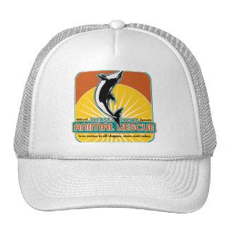 Delfín animal del rescate gorras