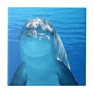 Delfín Azulejo Cuadrado Pequeño