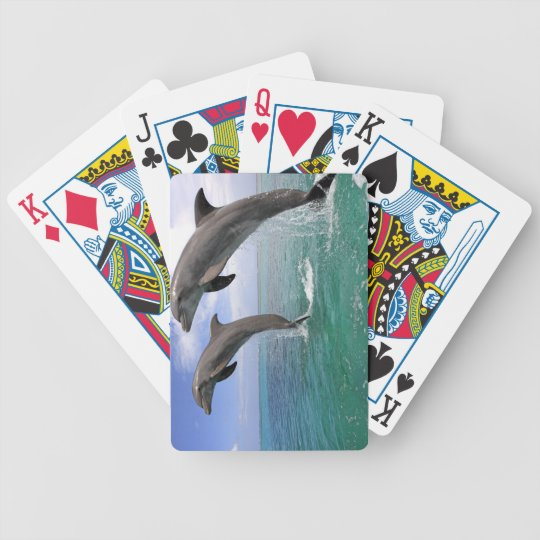 Delfin Bicycle Playing Cards