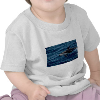 Delfín blanco-echado a un lado pacífico camisetas
