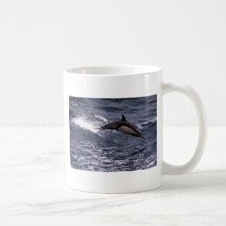 Delfín común de pico largo tazas