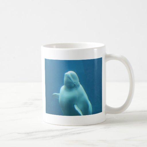 Delfín de Baluga Taza
