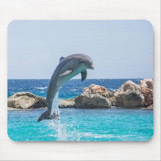 Delfín de Bottlenose Alfombrillas De Ratones