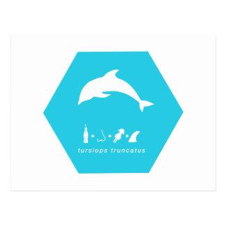 delfín de bottlenose hex.png azul tarjetas postales