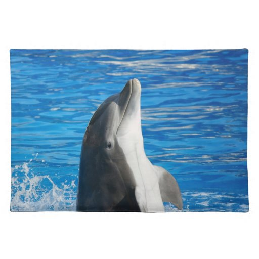 Delfín de Bottlenose Mantel