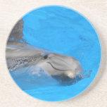 Delfín de Bottlenose sonriente Posavasos Para Bebidas