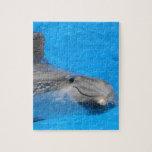 Delfín de Bottlenose sonriente Rompecabeza Con Fotos