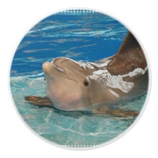 Delfín de equilibrio pomo de cerámica