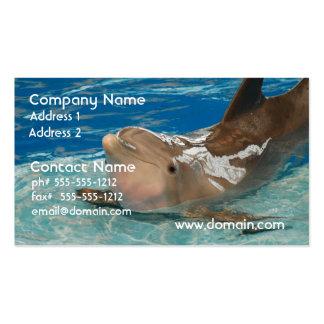Delfín de equilibrio tarjetas de visita