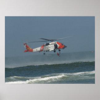 Delfín de Eurocopter MH-65D Póster