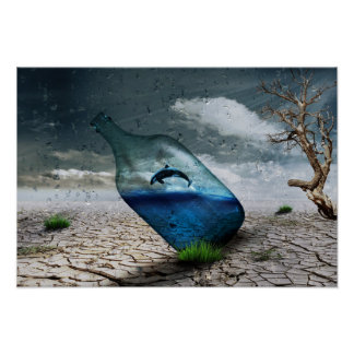 Delfín de la botella en poster del postre