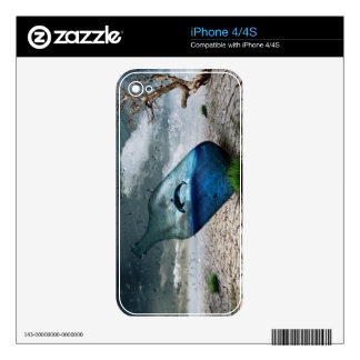 Delfín de la botella en postre iPhone 4 calcomanía