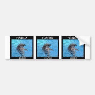Delfín de la Florida Pegatina Para Auto